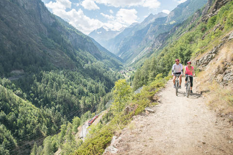 Zermatt-Visp Bike & Train Combination Package